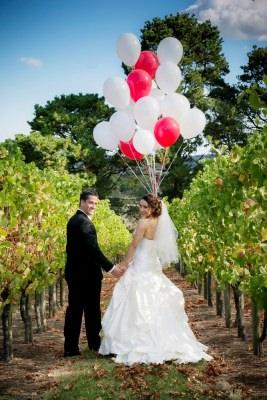Vines 10 (balloons)